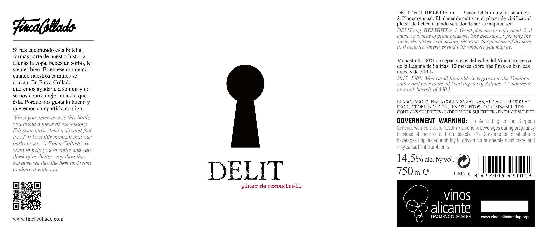 DELIT 2017